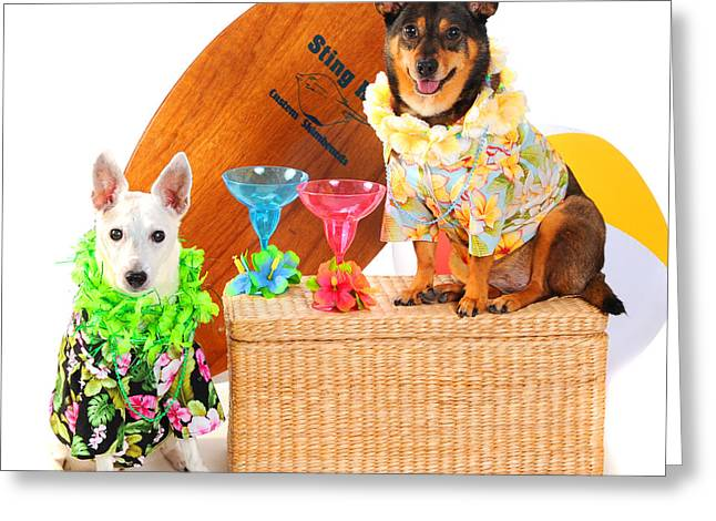 Hawaiian Party Surf Dogs Greeting Card