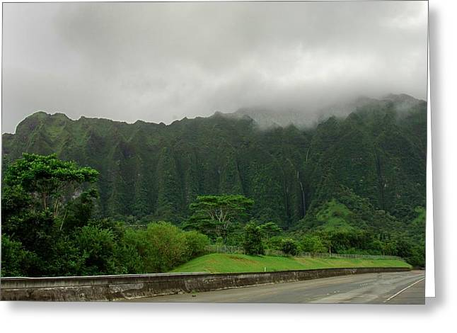 Hawaiian Rain Forest Greeting Card