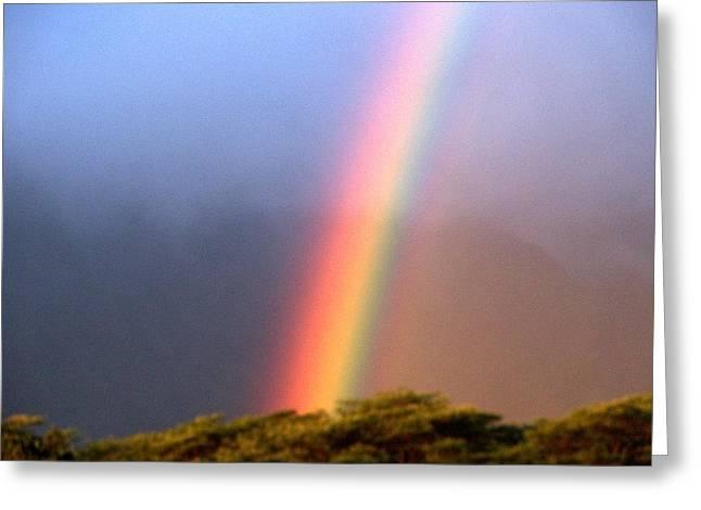 Hawaiian Rainbow Greeting Card