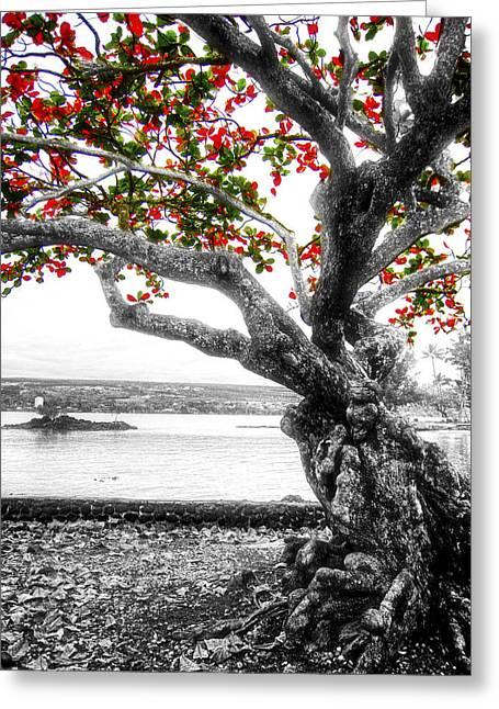 Hawaiian Red-leafed Tree Greeting Card by Daniel Hagerman