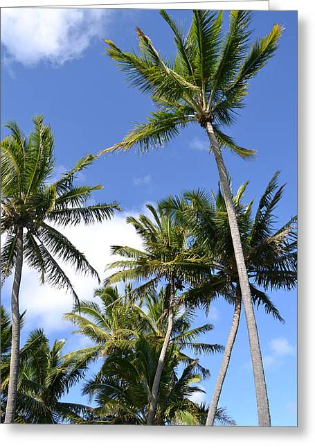 Hawaiian Skies Greeting Card