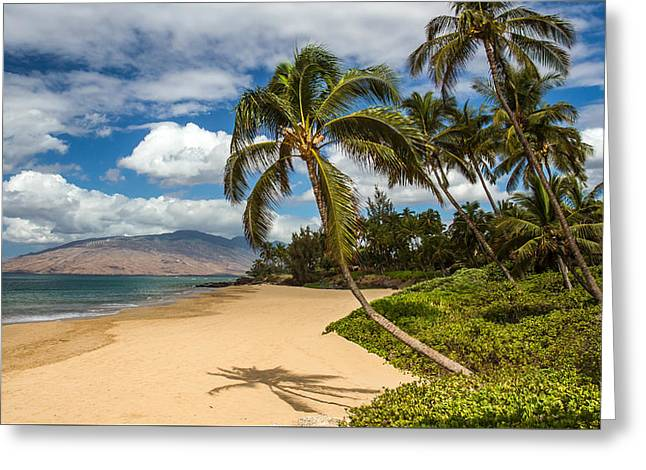 Hawaiian Tropical Paradise Greeting Card by Pierre Leclerc Photography
