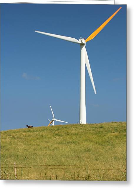 Greeting Card featuring the photograph Hawi Wind Farm  by Scott Rackers