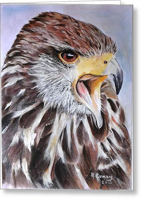 Hawk Greeting Card by Hendrik Hermans