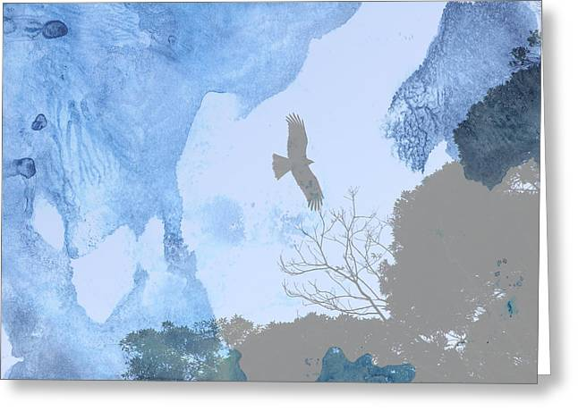 Hawk In Flight 1 Greeting Card