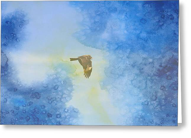 Hawk In Flight 2 Greeting Card