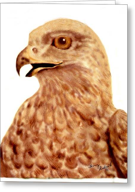 Greeting Card featuring the digital art Hawk by Terry Frederick