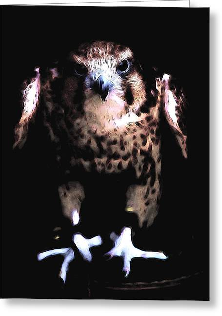 Hawk Greeting Card by Tilly Williams