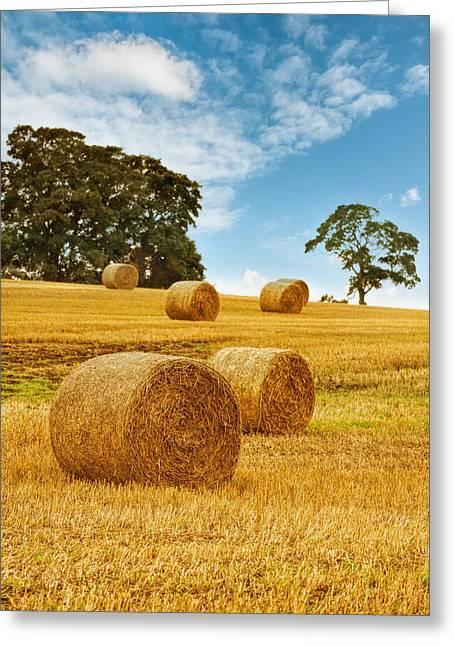 Hay Bales Greeting Card by Amanda Elwell