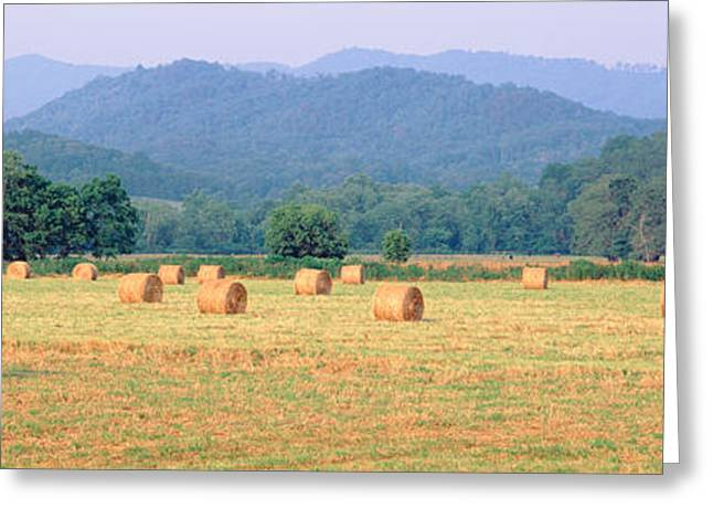 Hay Bales In A Field, Murphy, North Greeting Card by Panoramic Images