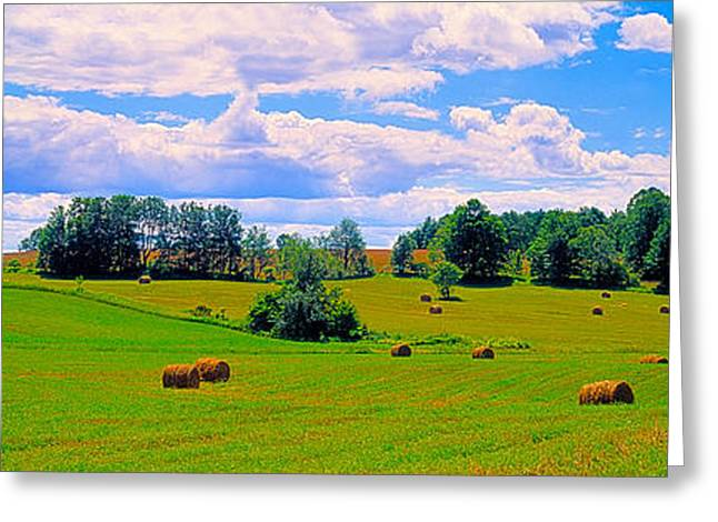 Hay Bales In A Landscape, Michigan, Usa Greeting Card by Panoramic Images