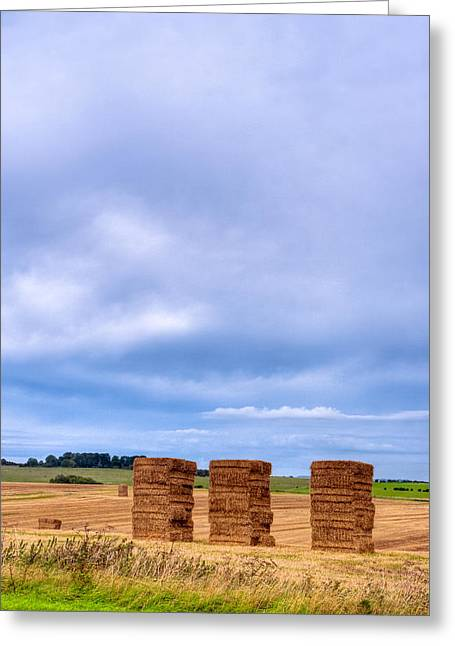Hay Bales In The Fields Of Wiltshire Greeting Card by Mark E Tisdale