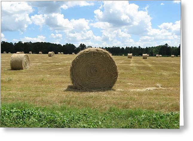Hay Bales In The Pasture Greeting Card by Ellen Jones