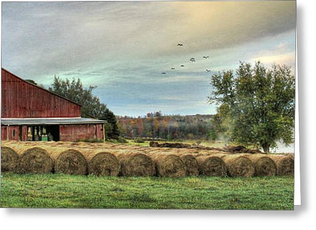 Hay Bales Greeting Card by Lori Deiter