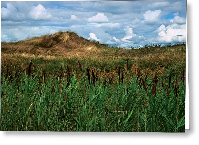 Hay Mound Greeting Card by Mike Feraco