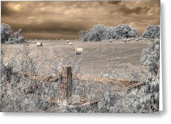 Hay Stacks Greeting Card by Jane Linders