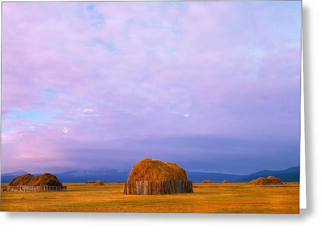 Hay Stacks Greeting Card by Leland D Howard