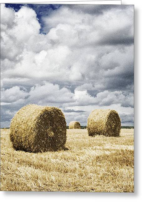 Haybales In A Field In England Uk Greeting Card by Jon Boyes