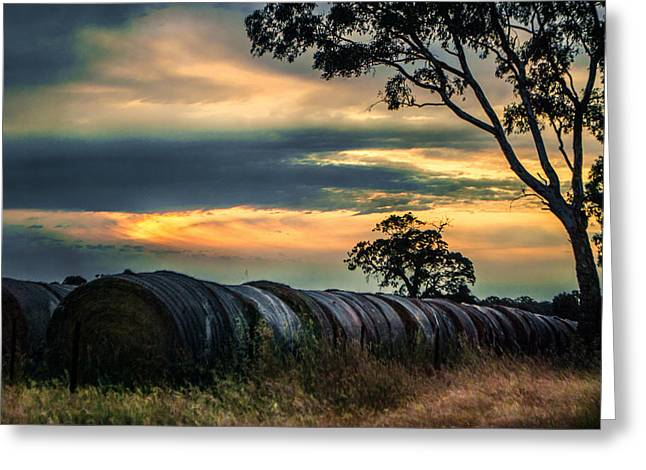 Haybales Under The Setting Sun Greeting Card by Katrina Dimond