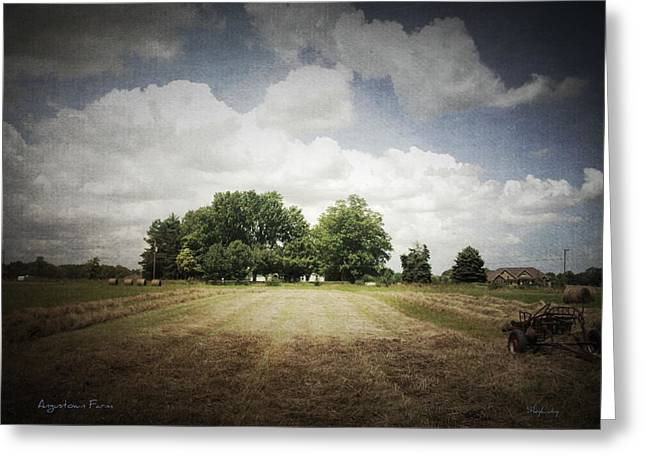 Haying At Angustown Greeting Card by Cynthia Lassiter