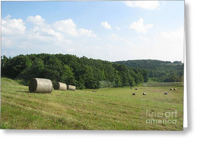 Haymaking Season Greeting Card