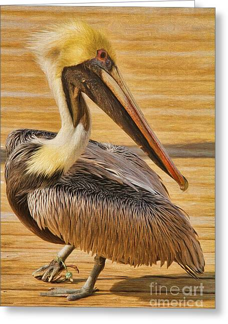 Hazards Of Bird Life Greeting Card by Deborah Benoit