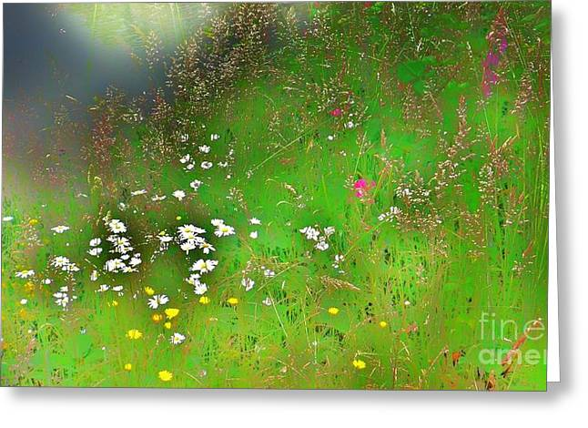 Hazy Meadow Abstract Greeting Card
