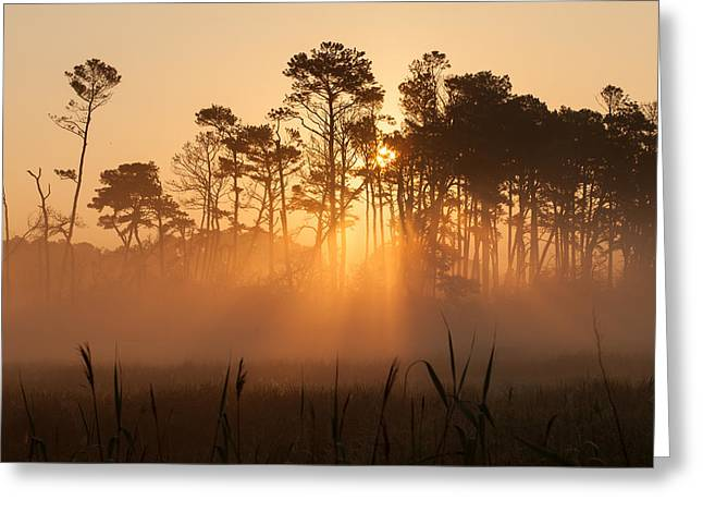 Hazy Summer Morning Sunrise Greeting Card
