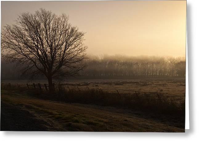 Hazy Sunrise Greeting Card by Mark Alder