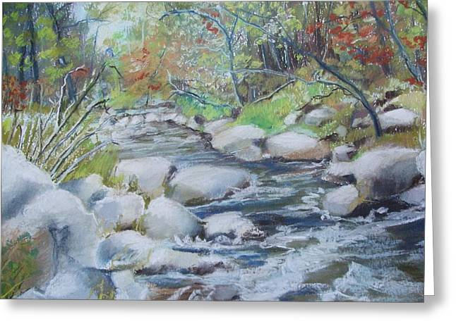 Head Waters On The James River Greeting Card