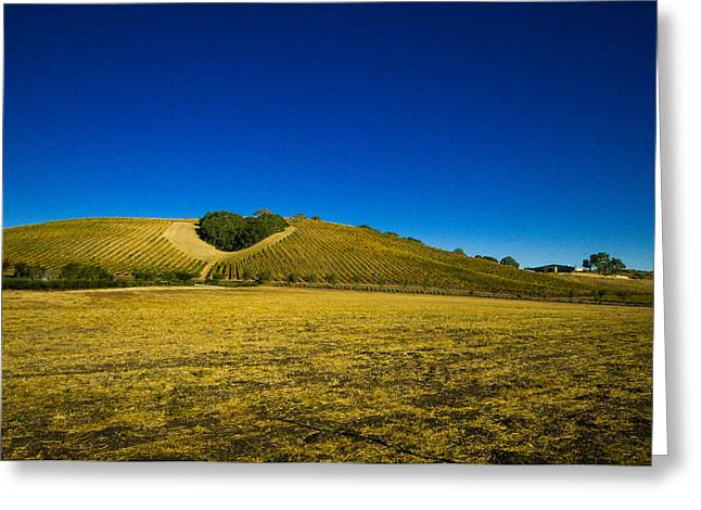 Heart Hill 3 Greeting Card by Connie Cooper-Edwards