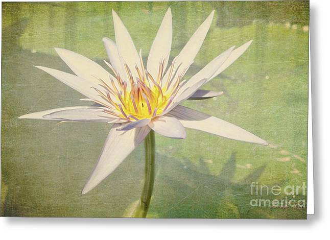 Heart Of Gold Greeting Card by Linda Lees