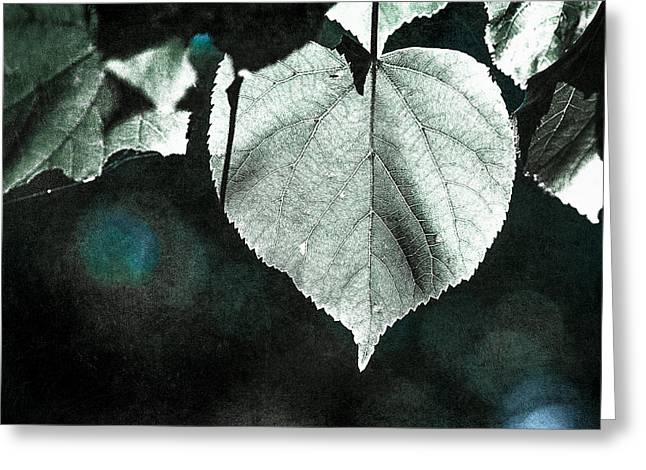 Heart Of The Forest - Silver Greeting Card