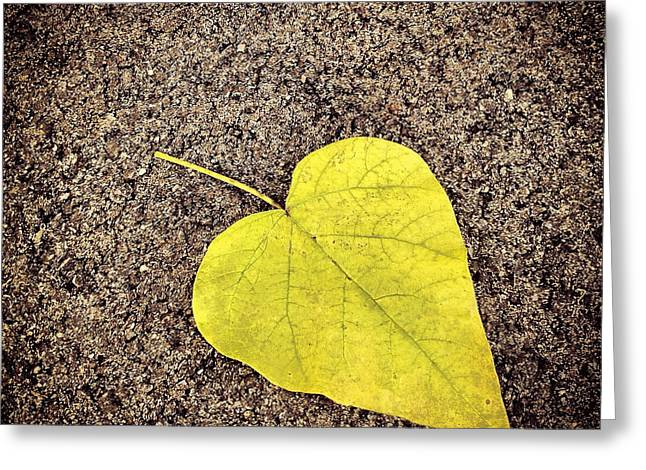 Heart Shaped Leaf On Pavement Greeting Card