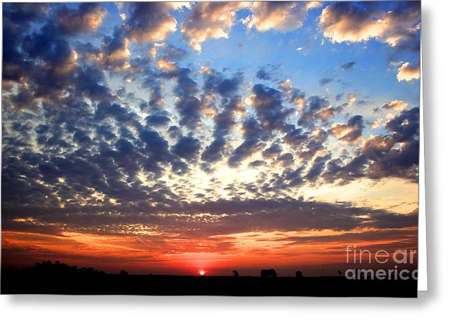Heartland Sunrise Greeting Card by Thomas Danilovich