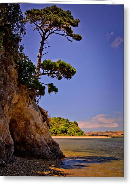 Greeting Card featuring the photograph Heart's Desire Beach by Janis Knight