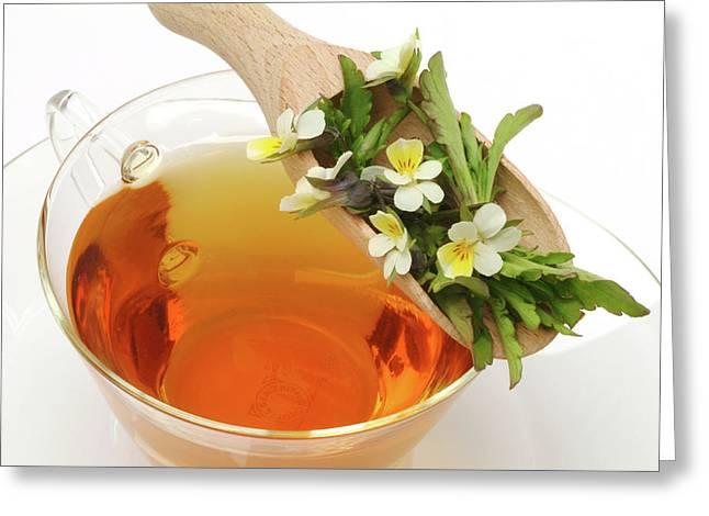 Heartsease Tea Greeting Card