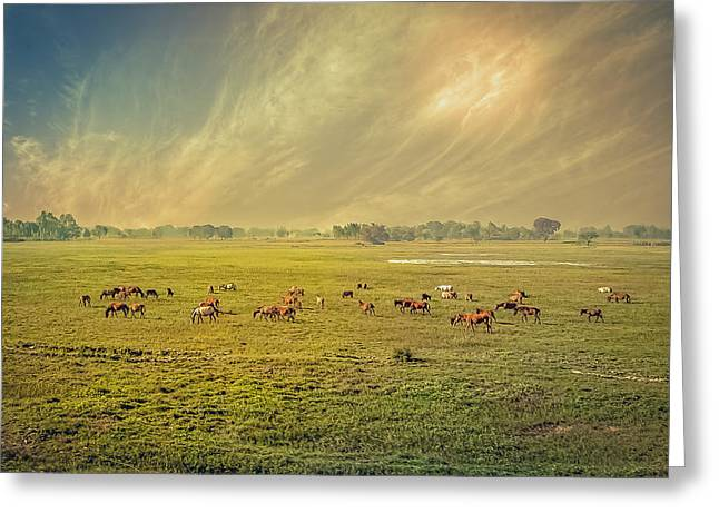 Heat N Dust - Indian Countryside Greeting Card