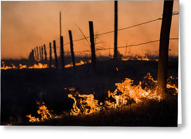 Greeting Card featuring the photograph Heat by Scott Bean