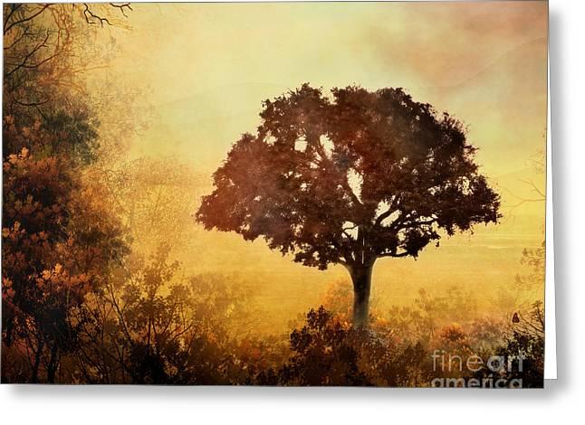 Heavenly Dawn Greeting Card by Bedros Awak