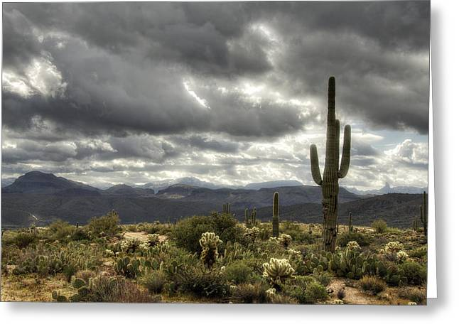 Heavenly Desert Skies  Greeting Card by Saija  Lehtonen
