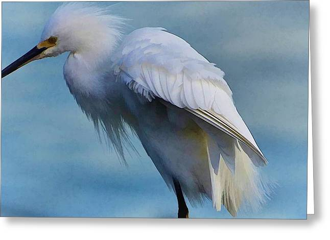 Heavenly Egret Greeting Card by Pamela Blizzard