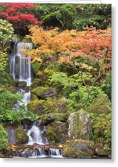 Heavenly Falls And Autumn Colors Greeting Card by William Sutton