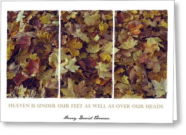 Heavenly Leaves Triptych Greeting Card