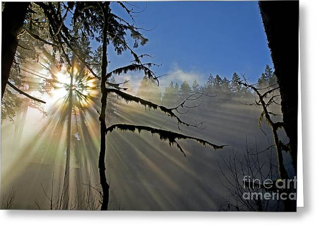 Heavenly Manifestation Greeting Card by Nick  Boren