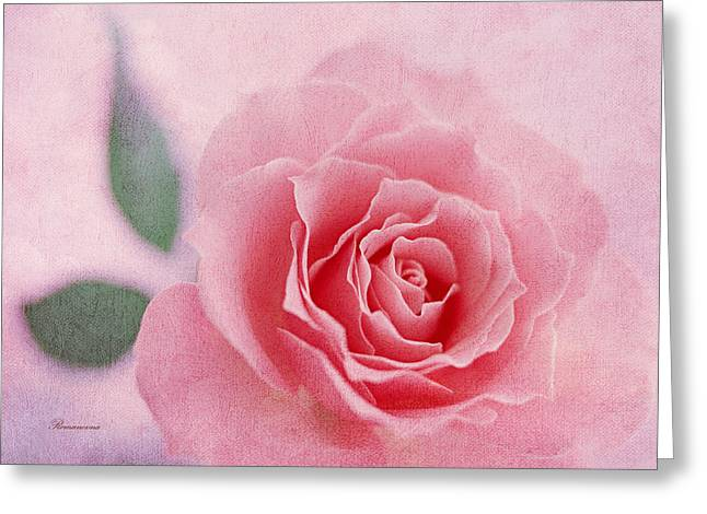 Heavenly Rose Greeting Card by Georgiana Romanovna