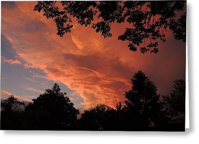 Heavenly View Greeting Card by Teresa Schomig
