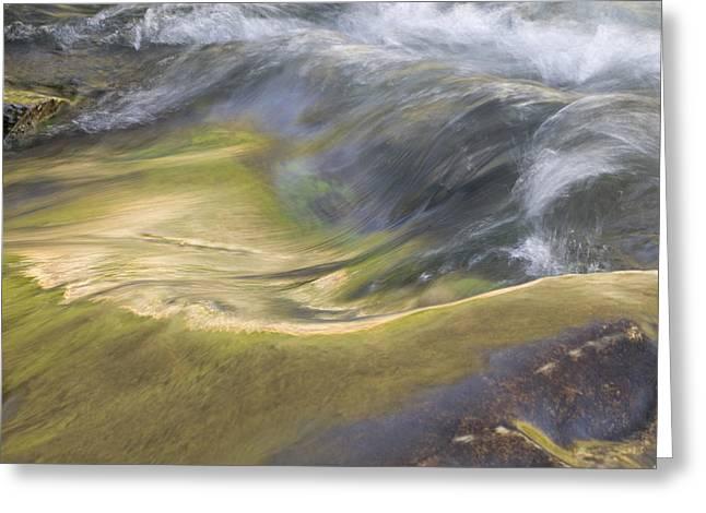 Heavy Metal Water Glacier National Park Greeting Card