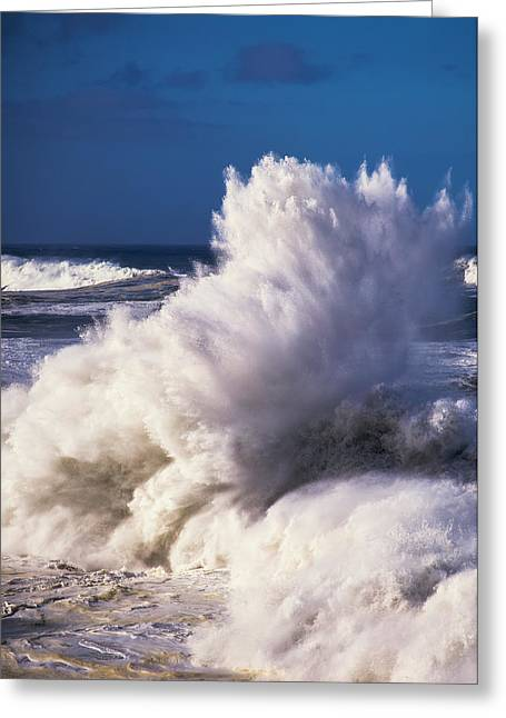 Heavy Surf Breaks At Shore Acres State Greeting Card