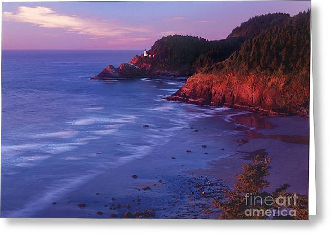 Greeting Card featuring the photograph Heceta Head Lighthouse At Sunset Oregon Coast by Dave Welling